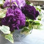 ムーンダスト~青いカーネーションの花言葉と通販店