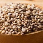 もち麦のダイエット効果~水溶性食物繊維がポイント!